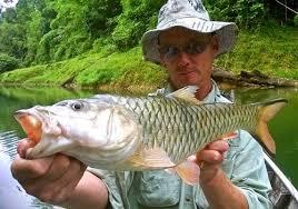 Озерная рыбалка на Пхукете на озере Чео Лан Као Сок